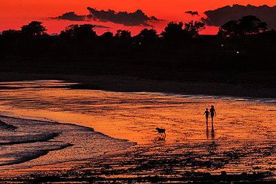 Silhouetted couple with dog walk on beach at Biddeford Pool at sunset - p1166m2136308 by Cavan Images