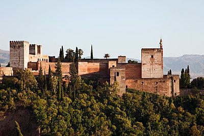 The Alhambra - p7050001 by Florian Tröscher