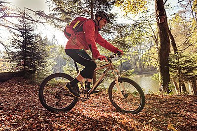 Man riding mountainbike on forest track - p300m2104362 by Sebastian Dorn