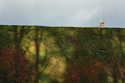 Schornstein hinter der Hecke - p1057m881347 von Stephen Shepherd