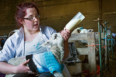 Young woman sitting in a barn, feeding a newborn lamb with milk from a bottle. Lamb dressed in a knitted blue jumper. - p1100m1450947 by Mint Images