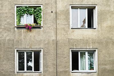 Wohnhaus in Wien - p1312m2053596 von Axel Killian