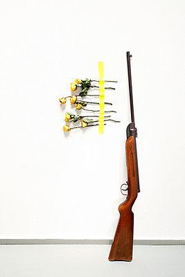 Luftgewehr mit Rosen - p2370568 von Thordis Rüggeberg