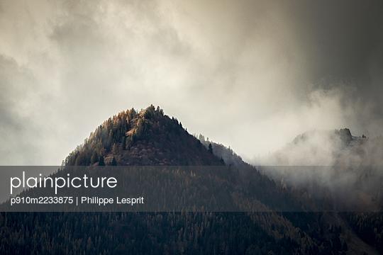 p910m2233875 by Philippe Lesprit