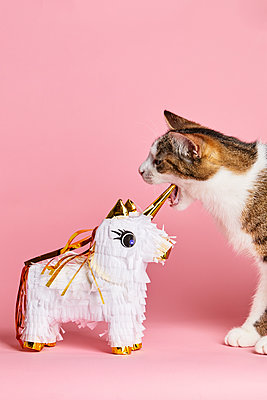 Unicorn and cat - p1540m2185310 by Marie Tercafs