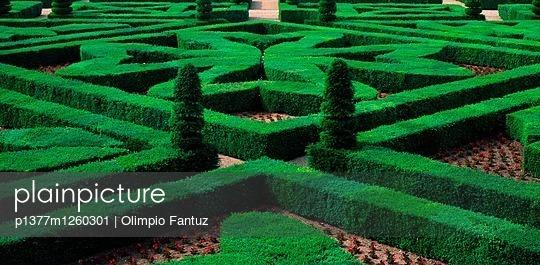 p1377m1260301 von Olimpio Fantuz
