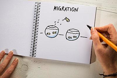 Illustration Migration - p299m1225695 von Silke Heyer