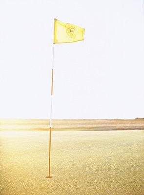 A golf course Sweden. - p31217828f by Elliot Elliot