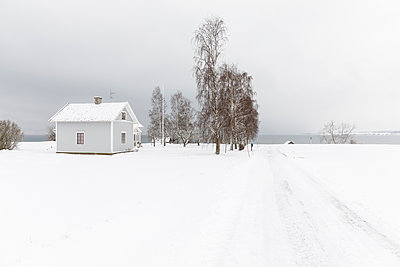 House by trees in snow - p352m2120085 by Åke Nyqvist