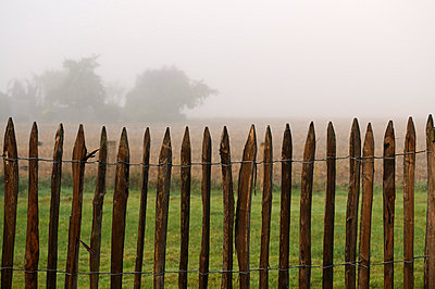 Wooden fence - p470m758121 by Ingrid Michel