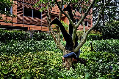 Frau kopfüber im Baum - p491m2260365 von Ernesto Timor
