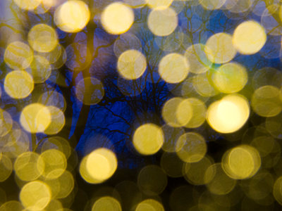 Leafless Trees and Luminous Raindrops through a Window - p1072m1056676 by chinch gryniewicz