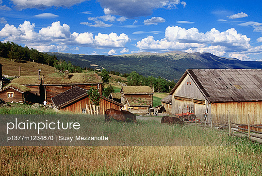 p1377m1234870 von Susy Mezzanotte