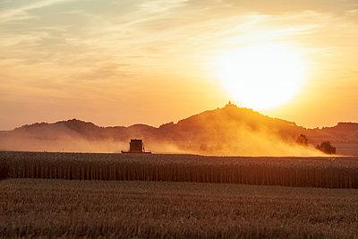 Getreideernte in der Abendsonne - p1168m2007769 von Thomas Günther