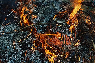 Feuer - p1321m1149765 von Gordon Spooner