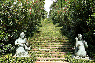 Garten der Nixen - p2770164 von Dieter Reichelt