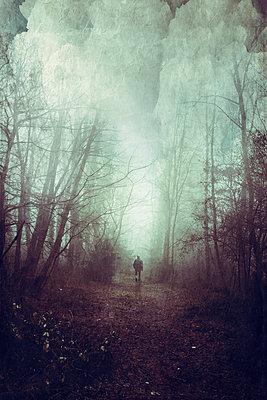 Rear view of a man on forest path - p300m2140279 by Dirk Wüstenhagen