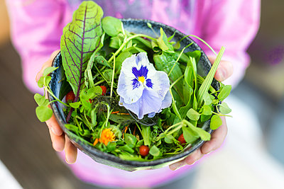 Girl's hands holding bowl of wild-herb salad with edible flowers, cranberries and wolfberries - p300m1189402 by Sandra Roesch