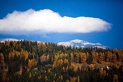 Berg mit Wald und Himmel - p8420077 von Renée Del Missier
