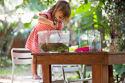 Girl standing on chair to scoop fishing net in plastic tadpole pond on garden table - p924m1480438 by Kinzie Riehm