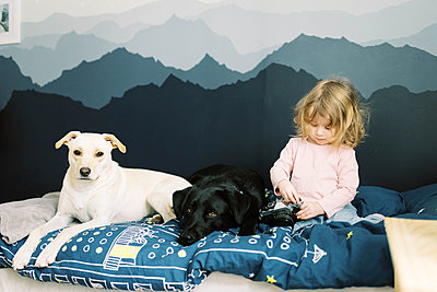 A little girl and her dogs. - p1166m2157452 by Cavan Images