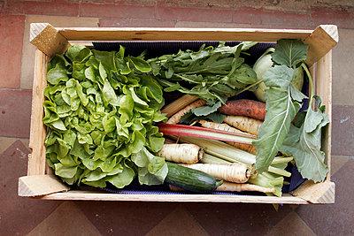 Bio-Gemüsekorb - p1650338 von Andrea Schoenrock