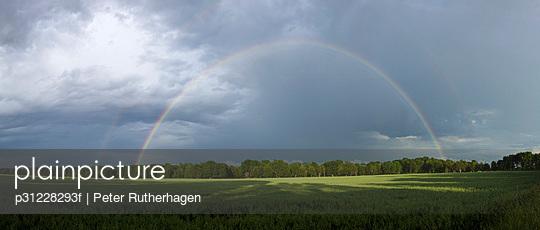 p31228293f von Peter Rutherhagen