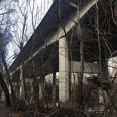 Österreich, Brücke bei Fischamend - p1401m2244787 von Jens Goldbeck