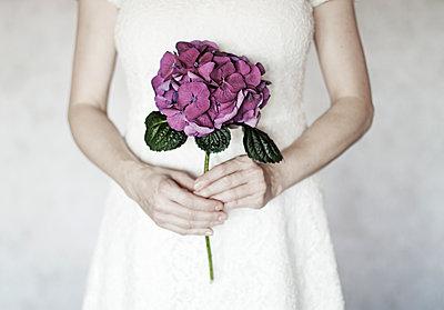 Frau hält eine Hortensie in beiden Händen - p1574m2147981 von manuela deigert