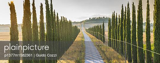 p1377m1582361 von Guido Cozzi