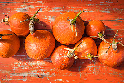 A collection of orange pumpkins - p1057m2209327 by Stephen Shepherd