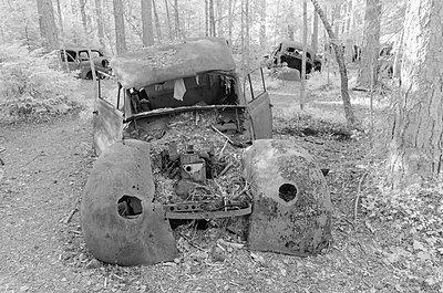Autofriedhof - p1463m2192657 von Wolfgang Simlinger
