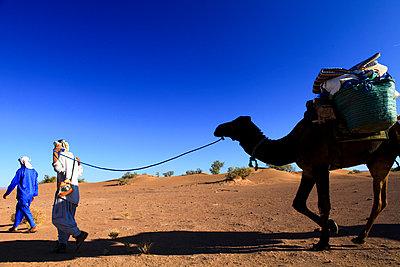 Trough the desert - p503m2135185 by Fabrice Arfaras