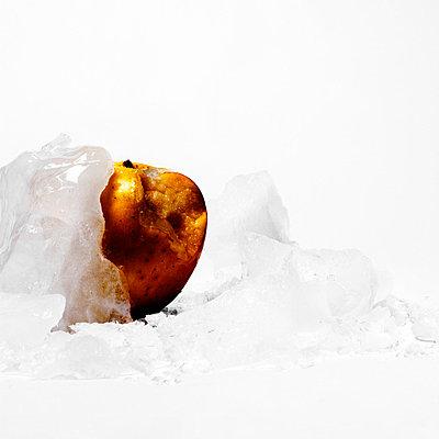 Frozen - p9100303 by Philippe Lesprit