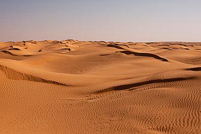Sahara - p548m911692 by Fred Leveugle