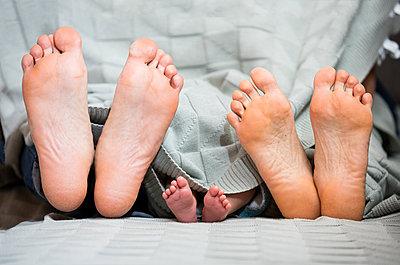 Füße von Eltern und ihrem Baby - p842m1588874 von Renée Del Missier