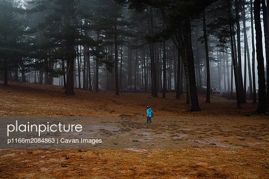p1166m2084863 von Cavan Images