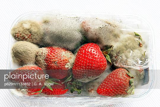 Verfaulte Erdbeeren - p629m1133852 von C. A. Vogel