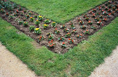 Garden   - p0190244 by Hartmut Gerbsch