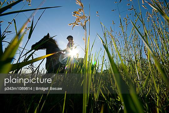 p343m1089814 von Bridget Besaw