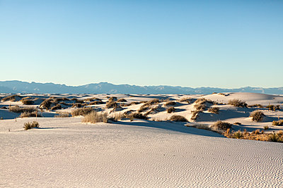 Scenic view of sand dunes at White Sands National Monument against clear blue sky - p1094m1209085 by Patrick Strattner