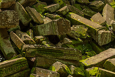 Fallen rocks covered in lichen and moss, Ta Prohm, Angkor Wat; Siem Reap, Siem Reap Province, Cambodia - p442m2039529 by Nick Dale