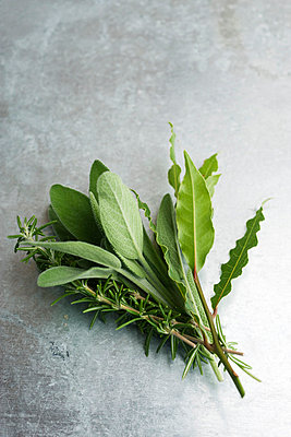 Fresh sage, rosemary, and bay leaves - p62319576f by Laurence Mouton