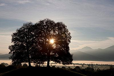 Sonnenaufgang - p7980059 von Florian Löbermann