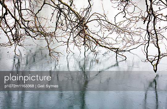 p1072m1163368 von Gail Symes