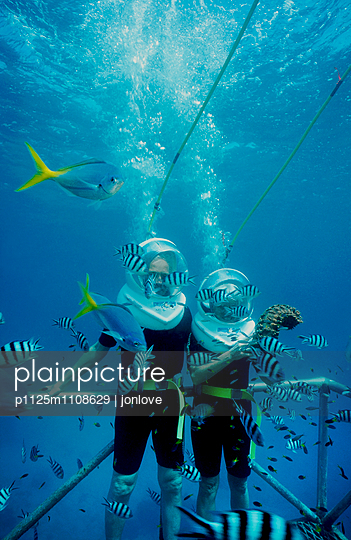 Two divers underwater with fish - p1125m1108629 by jonlove