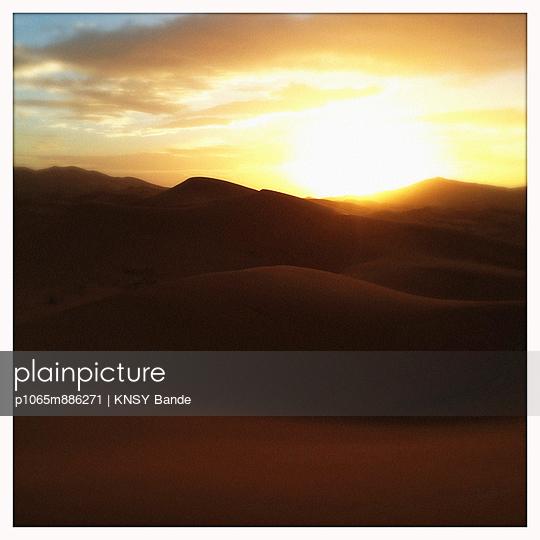Sahara - p1065m886271 by KNSY Bande