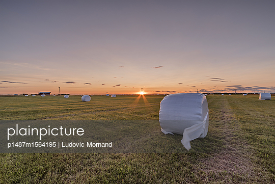 Farmer sunset - p1487m1564195 by Ludovic Mornand