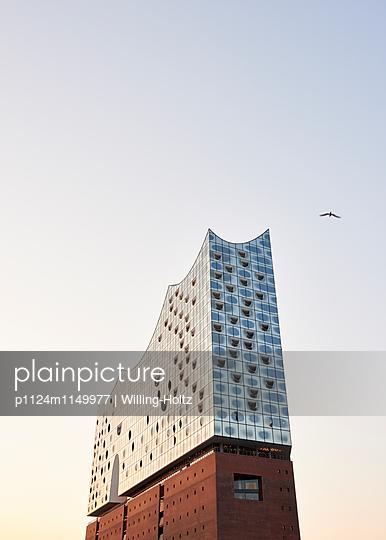 Elbphilharmonie Anschnitt - p1124m1149977 von Willing-Holtz
