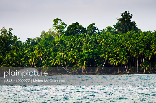 A prefect wave breaks in front a tropical island. - p343m1202277 by Myles McGuinness